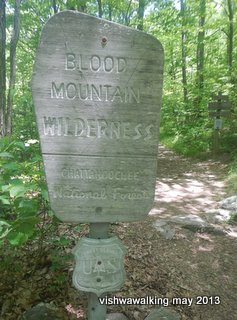 Appalachian - Blood Mountain Wilderness - sign