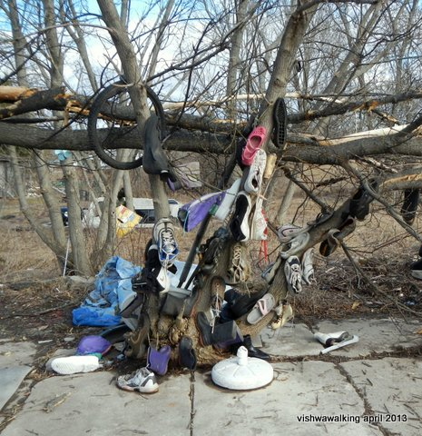 eldorado - a shoe tree as you come into town from the hht west