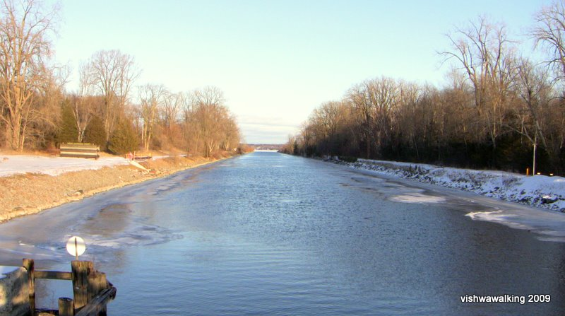 murray canal, west end -- straight again!