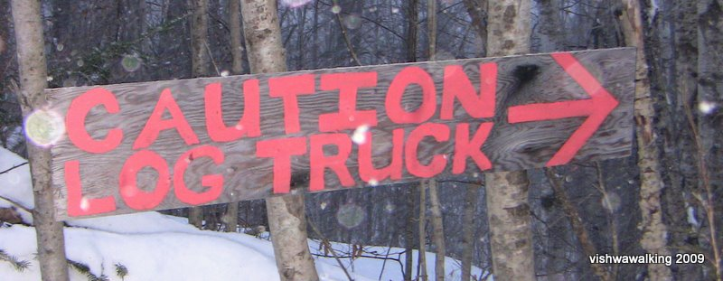 caution log truck