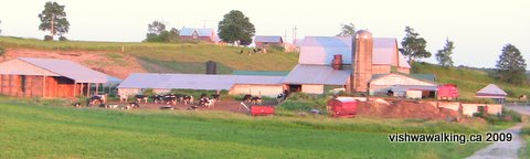 Tct, farm west of Spencer Road, south side.